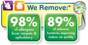 we remove allergens and bacteria from carpet & upholstery