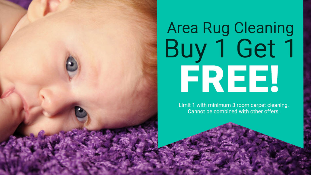 Coupon for Buy 1 Get 1 Free Area Rug Cleaning. Restrictions Apply