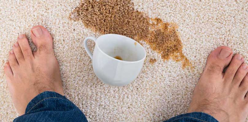 Carpet stain removal professionals omaha
